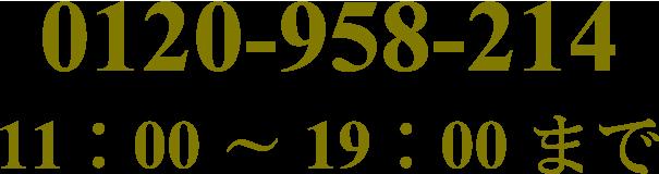 0120-958-214